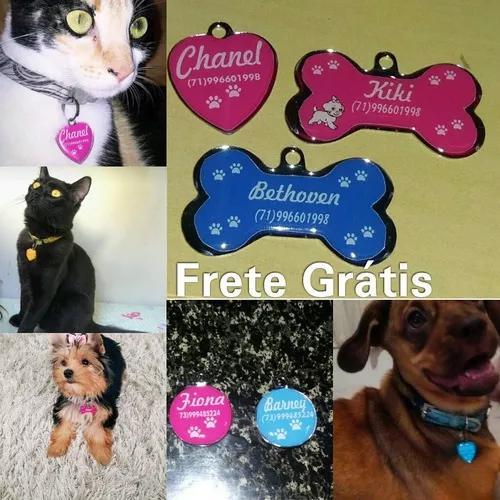 4 peças plaquinha de identificação cão ou gato