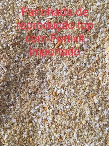 500 g de farinhada com fertivit pra curió,azulão e coleira
