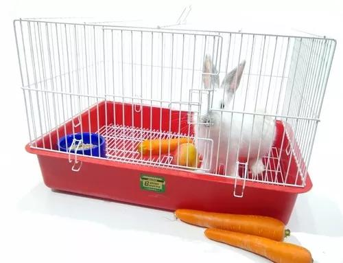 Gaiola coelho porquinho da índia chinchila bandeja