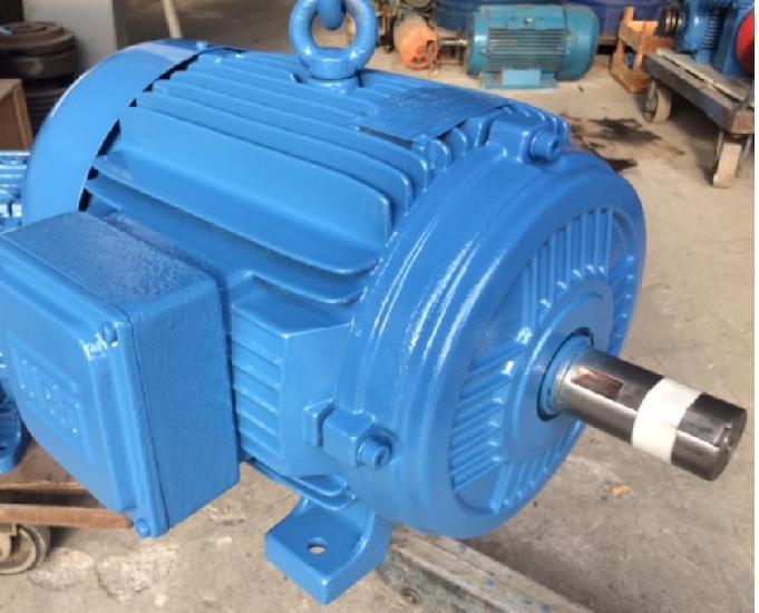 Motor Weg 10 Cv 1100 Rpm 6 Pólos Trifásico 4 Tensões