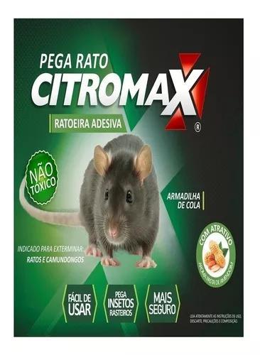 Ratoeira mata adesiva p/ ratos 6un. / frete grátis