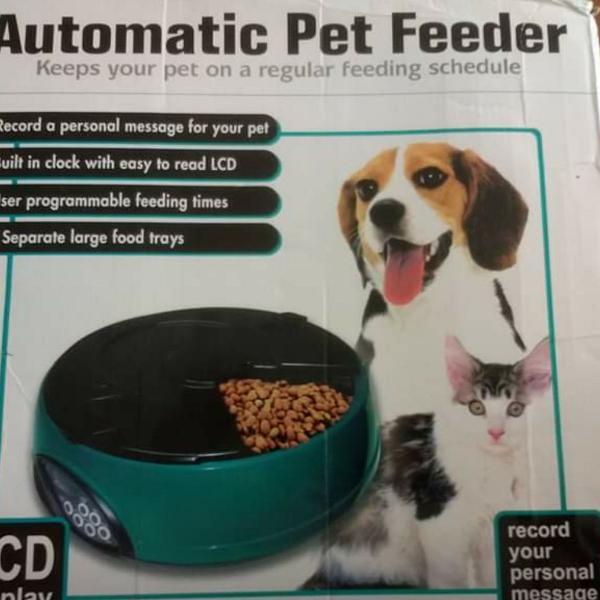 Alimentador pet automático