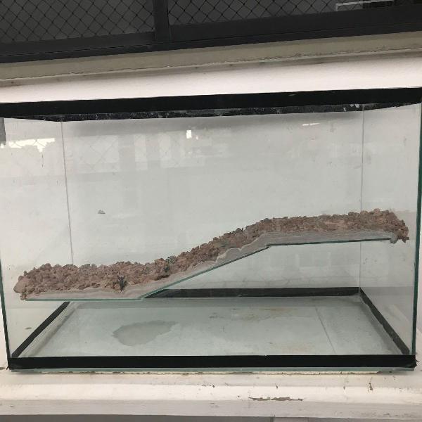 Aqua-terrário (aquário para tartaruga tigre d´água ou
