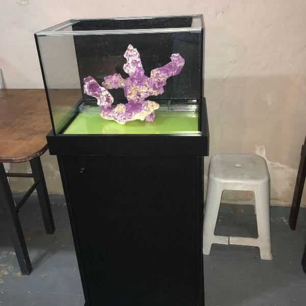 Aquário marinho nano reef 61 litros completo