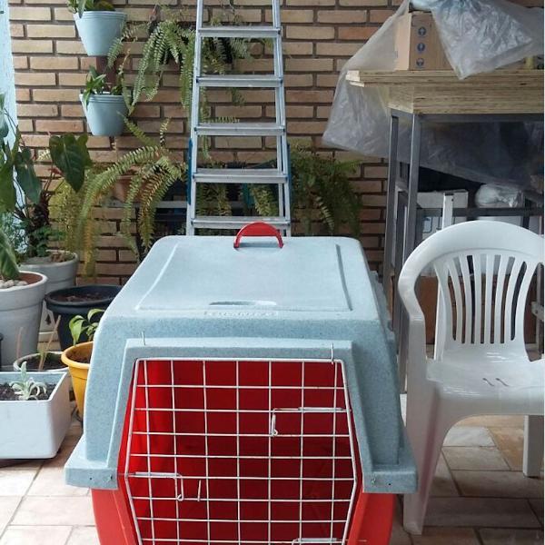 Caixa de transporte para cães grandes