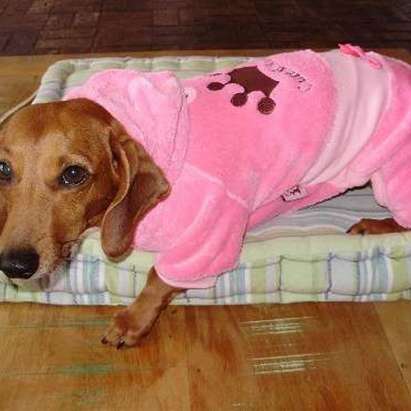 Macacão para cães porte pequeno