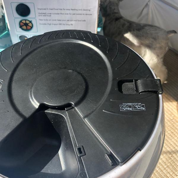 Pet alimentador automático