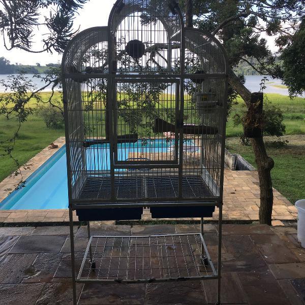 Viveiro ave de médio a grande porte