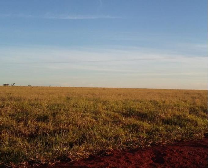 Excelente fazenda com 700 alqueires região nova alvorada ms