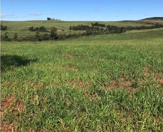 Oportunidade de fazenda com 237 alqueires quinta do sol pr