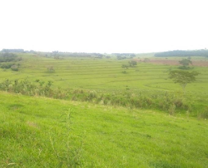 Oportunidade de fazenda com 126 alqueires em santo inácio