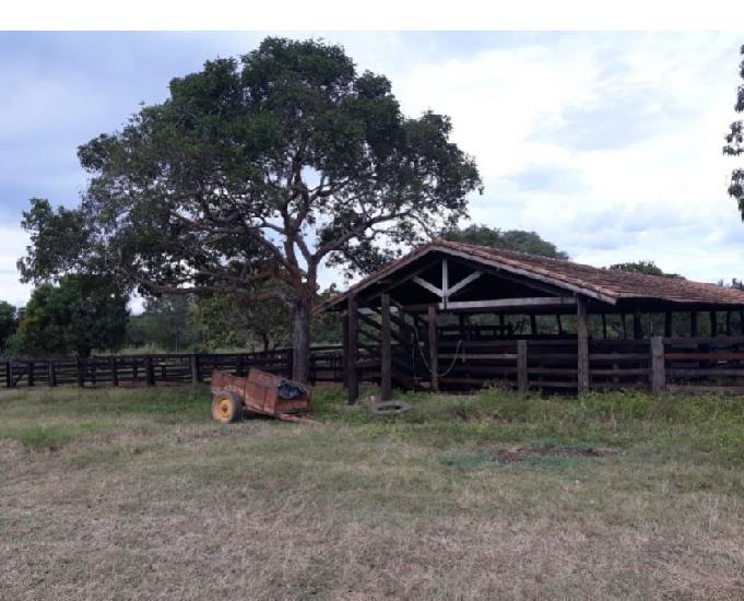 Fazenda 410 alqueires (1.984 hectares) talismã-to