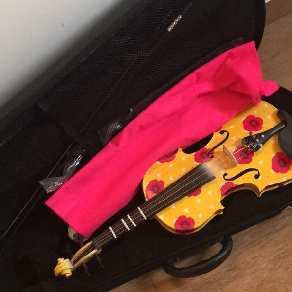 Violino com arco e case