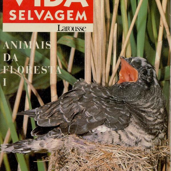 Enciclopédia da vida selvagem: animais da floresta 1