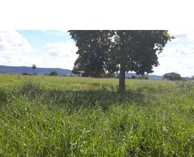 Fazenda 132 alqueires (638 hectares)- santa fé de goiás