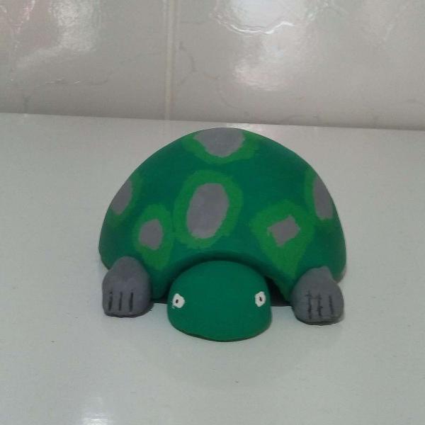 Tartaruga de cabaça