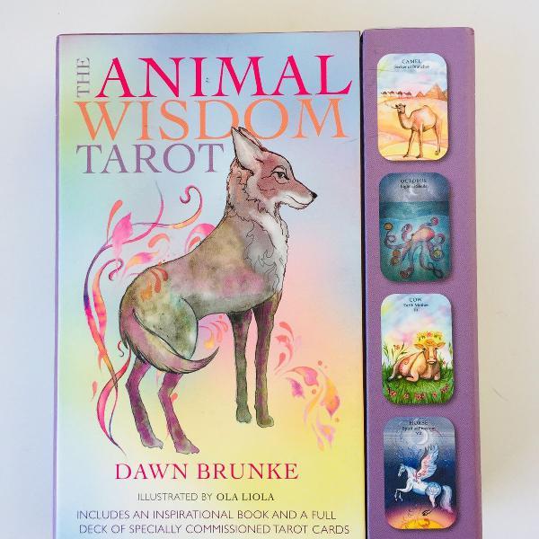 Animal wisdom tarot - tarô importado