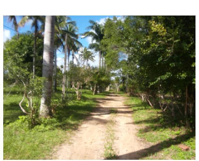 Lotes 900 m2 financiados próximo a praia de mangue seco