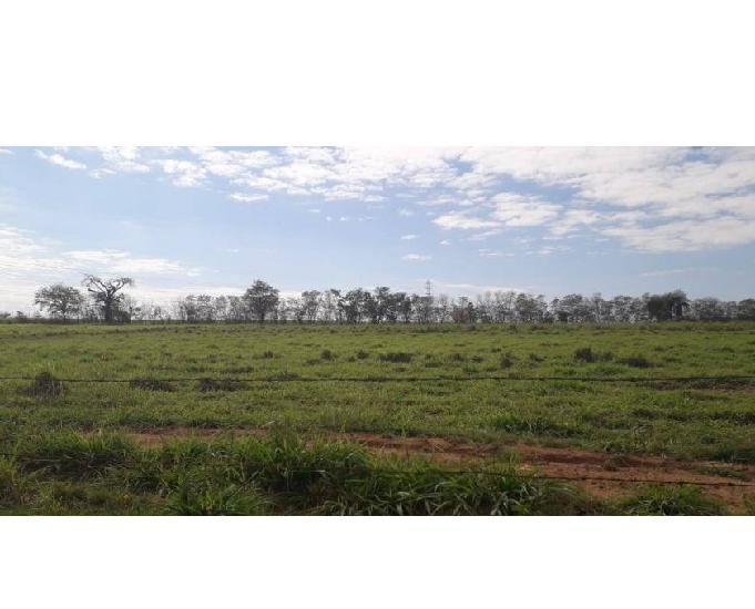 Fazenda com 52 alqueires em são josé do rio preto sp: