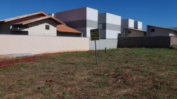 Terreno 250 m² em frente à ucdb