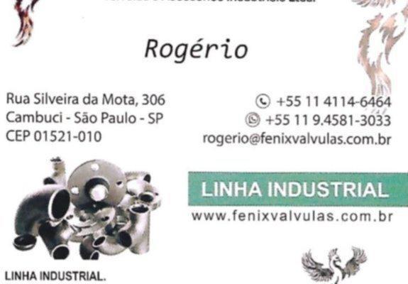 Fenix valvulas e materiais industriais
