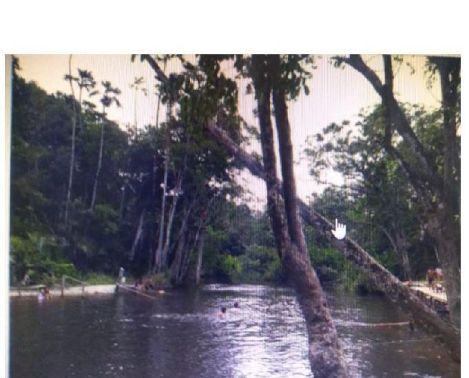 R$ 150.000 barbada 47 hectares r$ 150 mil reais,nas margens