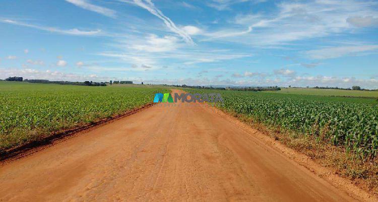 Fazenda, zona rural, 0 quarto, 0 vaga, 0 suíte