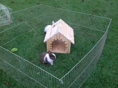 Casa toca de madeira p/ coelho chinchila porquinho da índia
