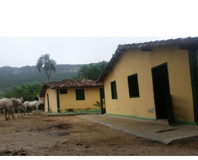 Fazenda área de 41 alqueires (200 hectares) goiás velho-go