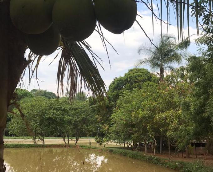Chácara rica em água com benfeitorias - 15 km de goiânia