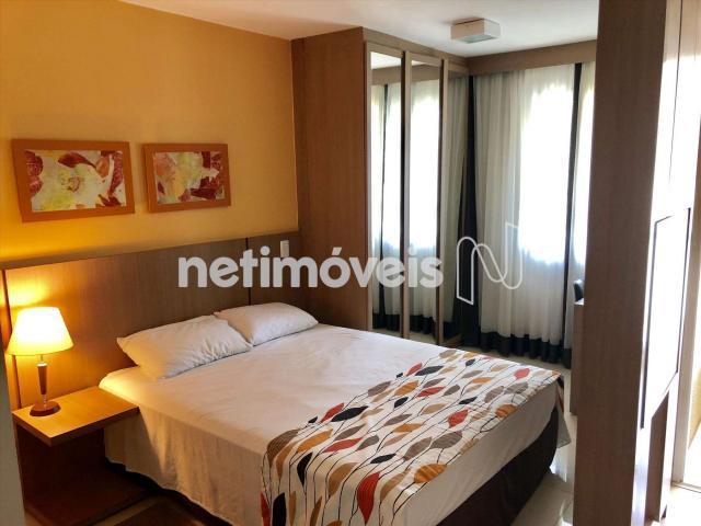 Loft para alugar com 1 dormitórios em asa norte, brasília