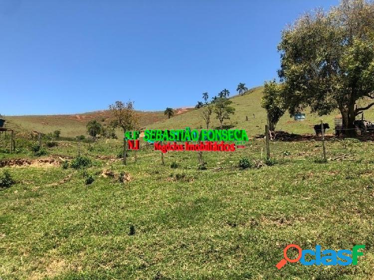 Fazenda - Sítio 13 alqueires e casa boa, eucalipto em Paraibuna 1