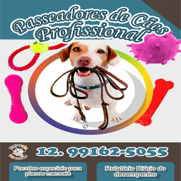 Dog walker passeio educacional
