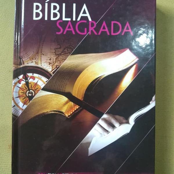 Bíblia sagrada com guia de estudo bíblia fácil - ra06m