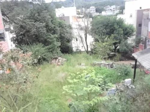 Jardim leonor, cotia
