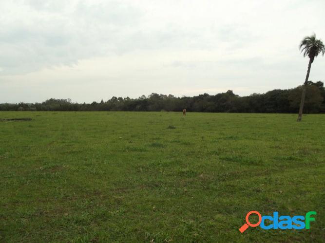 Linda área rural de 2 hectares, águas claras/viamão