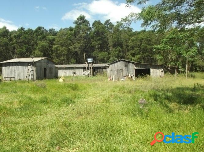 Sitio rural com 2 hectares, galpão para hotelaria, águas claras/viamão