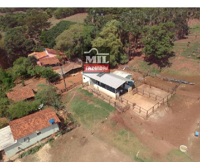 Fazenda 24 alqueires (116.16 hectares)- santa cruz -go