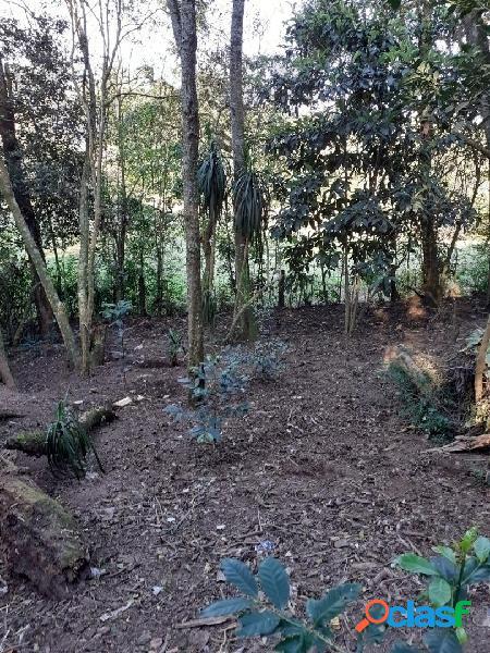 Linda área em meio à natureza do parque barigui - ideal para apartamentos