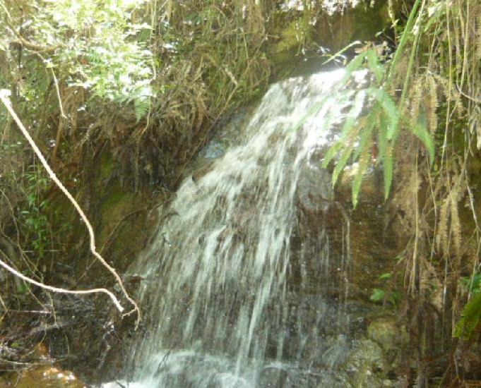 Fazenda com riacho,cascata e nascente própria de água!!!
