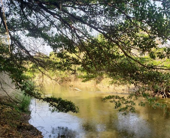 Sítio 2,1 alqueires em Vianopolis, margem Rio Piracanjuba