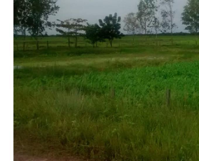 Fazenda município, presidente vargas ma com 48.961