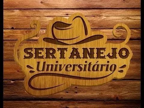 Pacote 750 Músicas Sertanejo Universitário 2015/16 E 2017