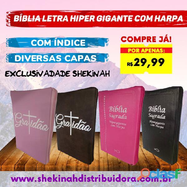Bíblia letra hiper gigante com harpa diversas capas