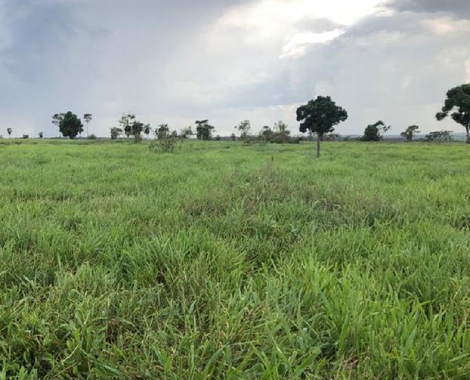 Oportunidade de fazenda com 910 hectares região iguatemi ms