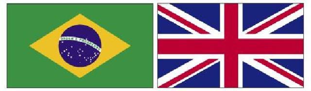 Tradução e revisão inglês e português