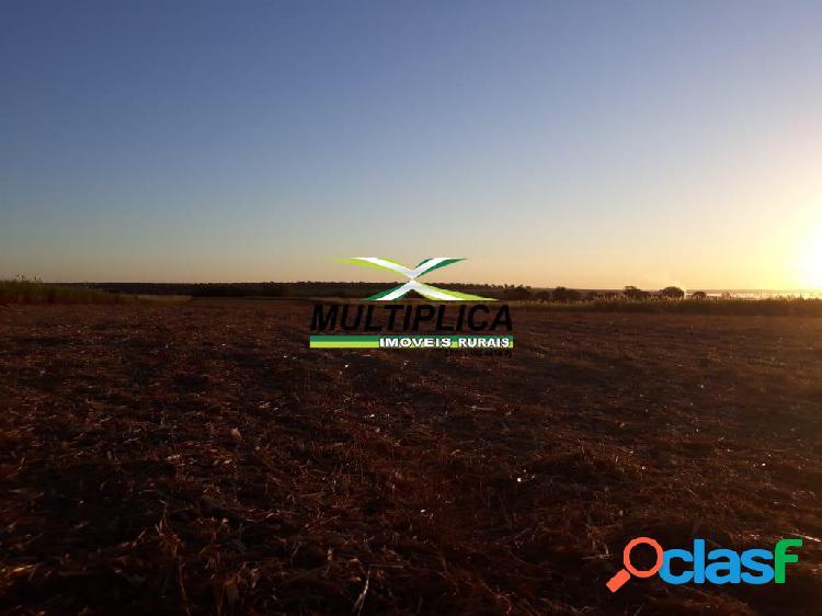 Fazenda a venda em santa vitória mg 174,24 hectares cana