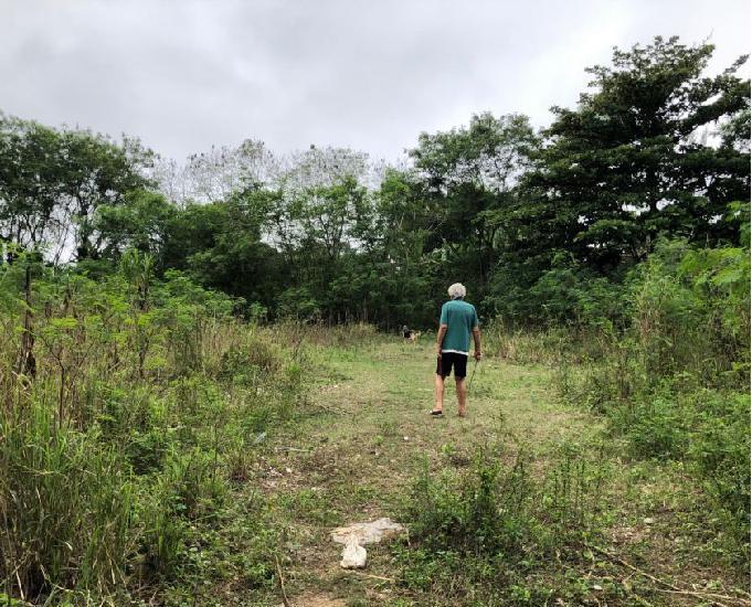 Terreno em vargem grande aluguel