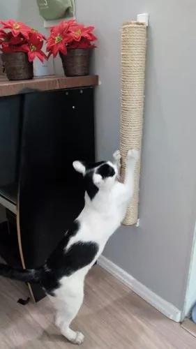 Arranhador de parede poste para gatos