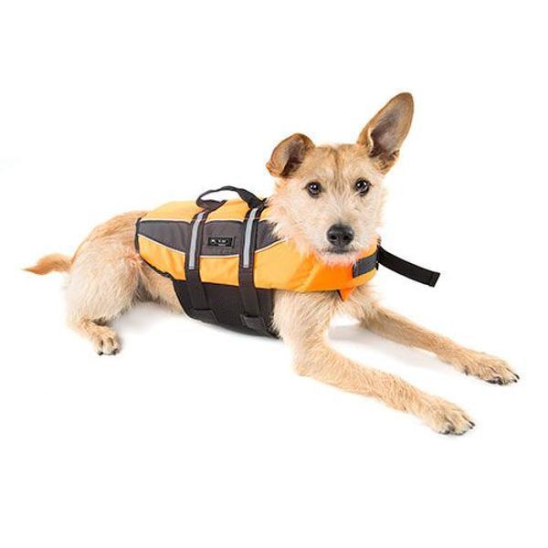 Colete salva vidas cachorro - boia cão